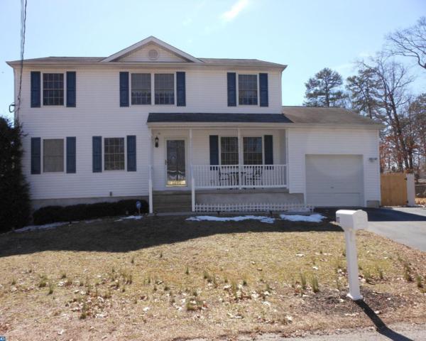 117 Snow Avenue, Browns Mills, NJ 08015 (MLS #6953602) :: The Dekanski Home Selling Team