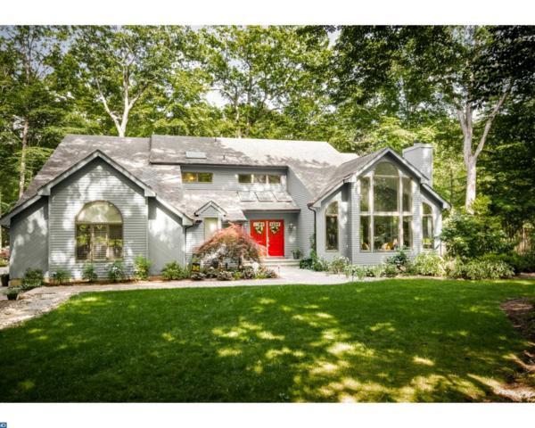 2 Partridge Run, WEST WINDSOR TWP, NJ 08550 (MLS #6961712) :: The Dekanski Home Selling Team