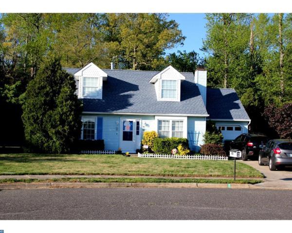 48 Sassafras Court, Sicklerville, NJ 08081 (MLS #6977768) :: The Dekanski Home Selling Team