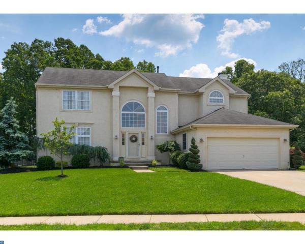 20 Red Gravel Circle, Gloucester Twp, NJ 08081 (MLS #6992822) :: The Dekanski Home Selling Team