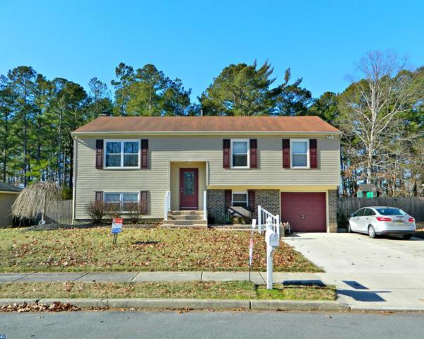 19 Sawood Drive, Gloucester Twp, NJ 08081 (MLS #7028190) :: The Dekanski Home Selling Team