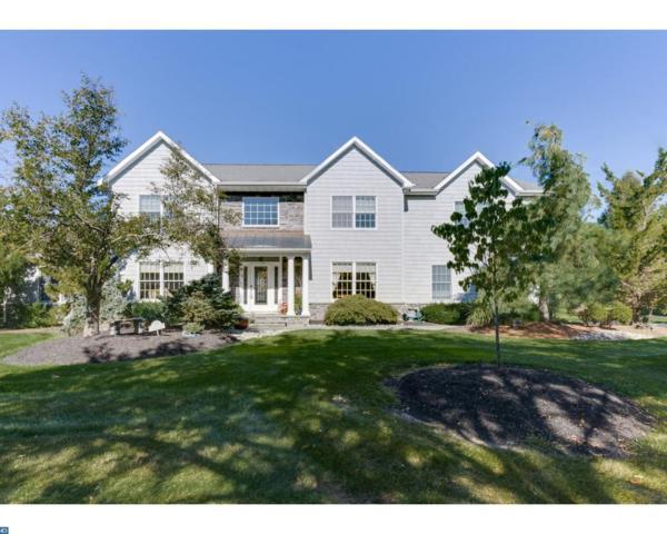 15 Ginnie Lane, WEST WINDSOR TWP, NJ 08550 (MLS #7056110) :: The Dekanski Home Selling Team
