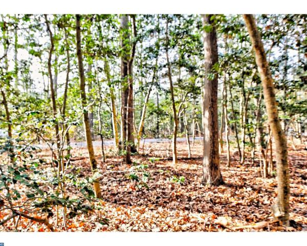 17 Holly Oak Lane, Lewes, DE 19958 (#7102715) :: RE/MAX Coast and Country