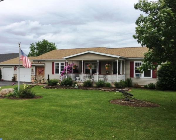 1247 Walnut Drive, Danielsville, PA 18038 (#7160736) :: The Kirk Simmon Team
