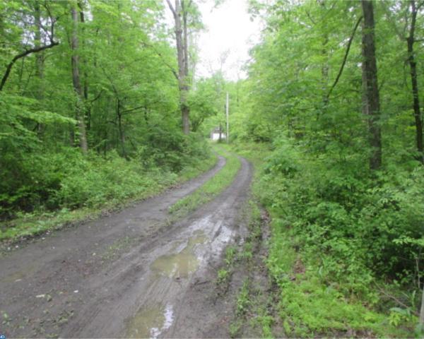 188 Roaring Rocks Road, Upper Black Eddy, PA 18972 (#7185628) :: REMAX Horizons