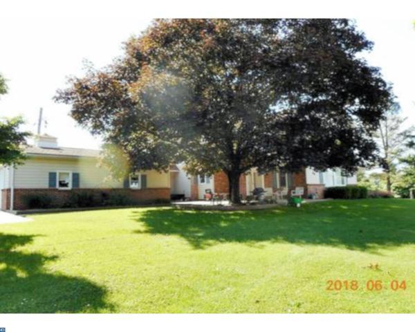 20 Division Street, Pine Grove, PA 17963 (#7195635) :: Ramus Realty Group