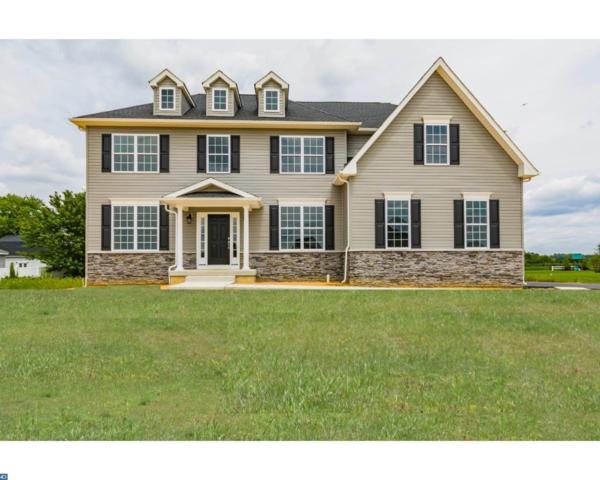 109 Alexa Way, Mullica Hill, NJ 08062 (MLS #7038910) :: The Dekanski Home Selling Team