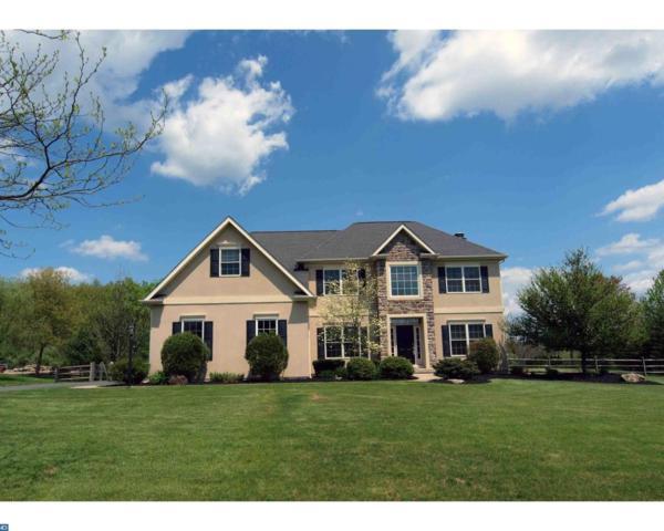 3859 Buck Hill Circle, Schnecksville, PA 18078 (#7148125) :: The John Collins Team