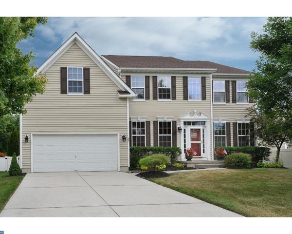 80 Deer Horn Drive, Mount Royal, NJ 08061 (MLS #7204689) :: The Dekanski Home Selling Team