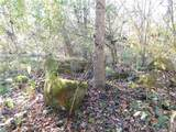 Lot # 6 Pheasant Trail - Photo 3