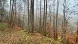 000 Elk Creek Road - Photo 14