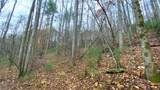 000 Elk Creek Road - Photo 24