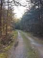 301 Coggins Mine Road - Photo 50