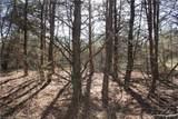 40 ac Huckleberry Ridge Road - Photo 32