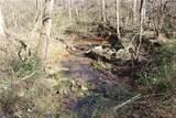 40 ac Huckleberry Ridge Road - Photo 8