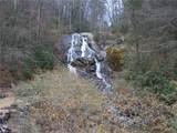 #35 Bobcat Mountain Road - Photo 4