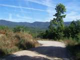 #35 Bobcat Mountain Road - Photo 6