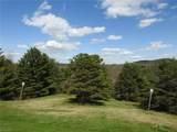 225 Deer Track Lane - Photo 21