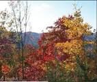 147 Buck Mountain Road - Photo 4