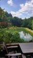 LOT 102 Phase 5 Staghorn Road - Photo 13