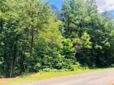 0 Dixie Trail - Photo 3