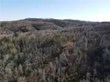 253 Acres on Brim Road - Photo 10