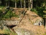 2667 Bear Trail - Photo 11