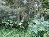 1134 Piney Branch Lane - Photo 28