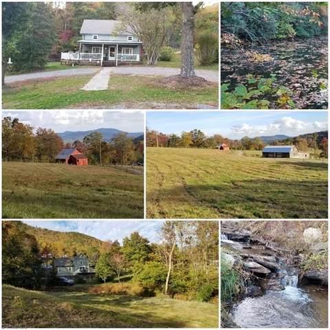 178 Richardson Trail, Lowgap, NC 27024 (MLS #000660) :: Lewis & Clark, Realtors®