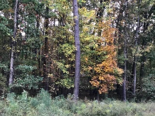 0 Mt Hermon Rock Creek Road, Snow Camp, NC 27349 (MLS #000827) :: Ward & Ward Properties, LLC