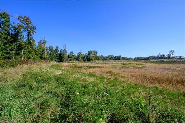 01 Deer Skin Lane, Kernersville, NC 27284 (MLS #001756) :: Hillcrest Realty Group