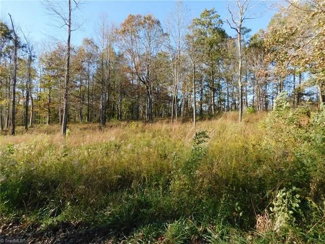 Lot #10 Pheasant Trail, Pilot Mountain, NC 27041 (#002348) :: Rachel Kendall Team