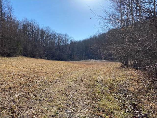TBD approx 16.2 AC Toms Creek Church Road, Pilot Mountain, NC 27041 (MLS #1009021) :: Team Nicholson