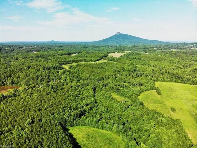 00 High Bridge Road, Pinnacle, NC 27043 (#1014198) :: Mossy Oak Properties Land and Luxury