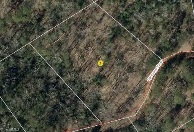 0 Opossums Road, Lake Lure, NC 28746 (MLS #1015971) :: Team Nicholson