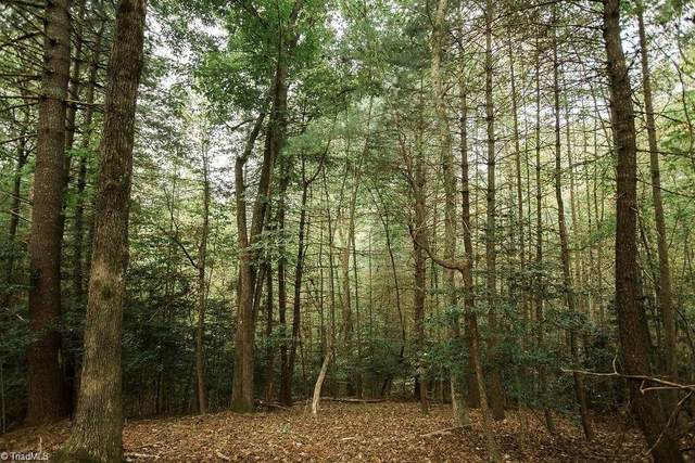 Lake Lot 1 Williams Farm Road, Wilkesboro, NC 28697 (MLS #1019486) :: Ward & Ward Properties, LLC