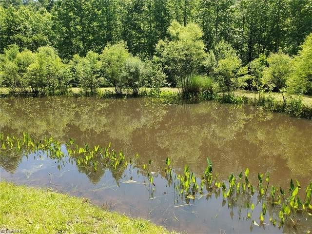 193 Healing Springs Drive, Denton, NC 27239 (MLS #1019644) :: EXIT Realty Preferred