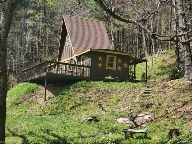 891 Alpine Acres Road, Vilas, NC 28692 (#1020786) :: Rachel Kendall Team