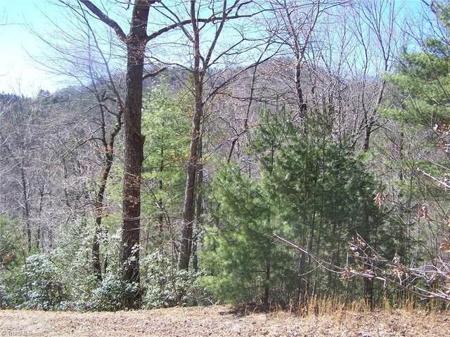 43 Mountain Lion Road, Purlear, NC 28665 (MLS #1021098) :: Ward & Ward Properties, LLC