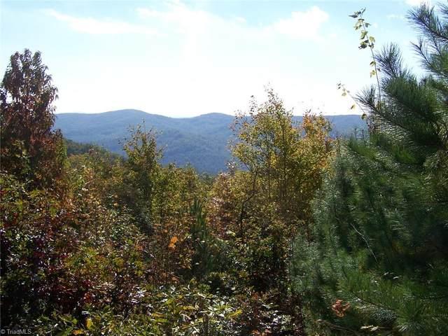 44 Mountain Lion Road, Purlear, NC 28665 (MLS #1021106) :: Ward & Ward Properties, LLC