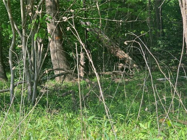 00 Wildcat Road, Moravian Falls, NC 28654 (MLS #1021319) :: Ward & Ward Properties, LLC