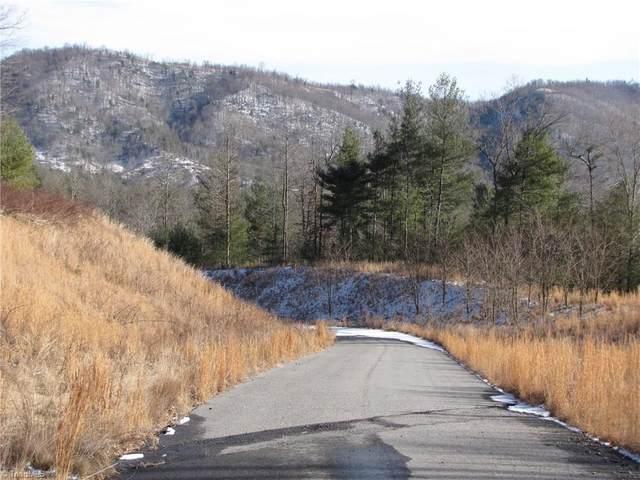 Off Vannoy Road, Millers Creek, NC 28651 (MLS #1022411) :: Ward & Ward Properties, LLC