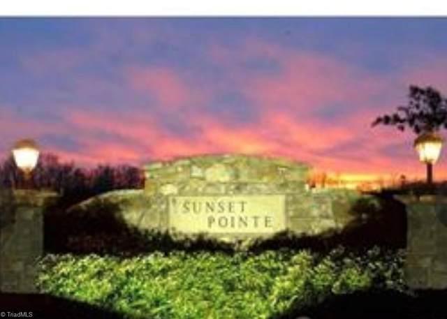 1151 Sunset Pointe Drive, Salisbury, NC 28146 (#1025944) :: Premier Realty NC