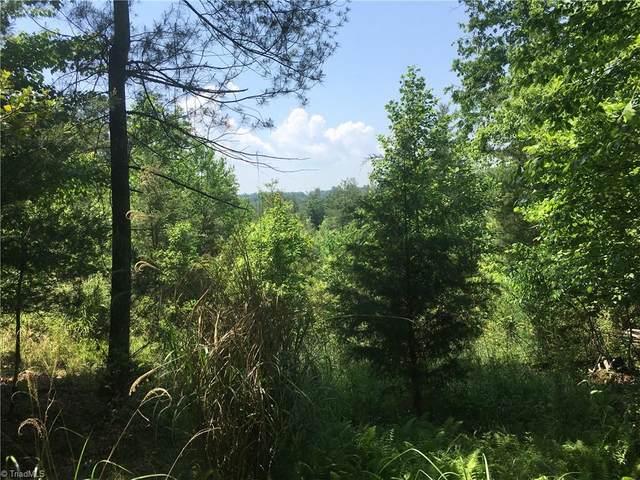 Lot11 Brown Berry Road, North Wilkesboro, NC 28659 (MLS #1028199) :: Ward & Ward Properties, LLC