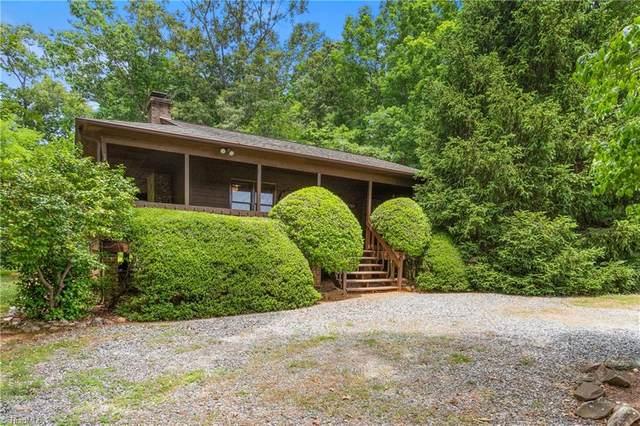 1973 Finch Farm Road, Trinity, NC 27370 (#1030893) :: Rachel Kendall Team