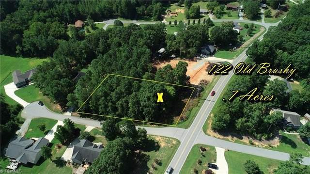 122 Old Brushy Drive, Lexington, NC 27292 (MLS #1032738) :: Ward & Ward Properties, LLC
