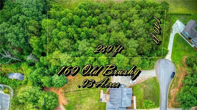169 Old Brushy Drive, Lexington, NC 27292 (MLS #1032739) :: Ward & Ward Properties, LLC
