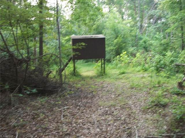 000 Narrow Gauge Road, Ruffin, NC 27320 (MLS #1036746) :: Hillcrest Realty Group