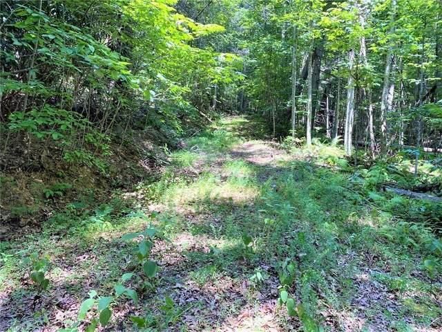 LT62 Riverview Road, Millers Creek, NC 28651 (MLS #1039184) :: Ward & Ward Properties, LLC
