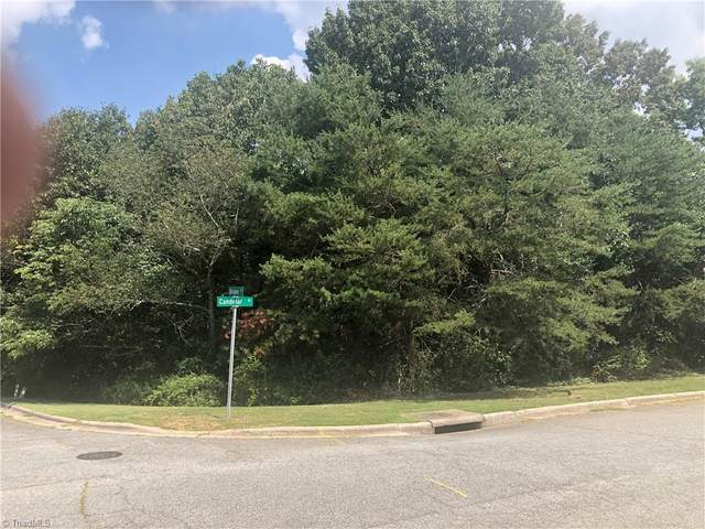 2200 Delaine Point, High Point, NC 27265 (#1039802) :: Mossy Oak Properties Land and Luxury